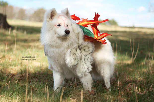 I am in puppy love with this Okami cosplay -Destructoid